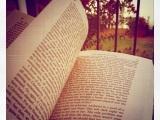 Between Books: Prayer DuringPregnancy